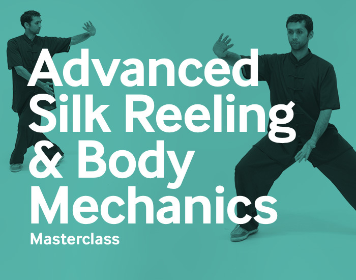 Advanced Silk Reeling & Body Mechanics